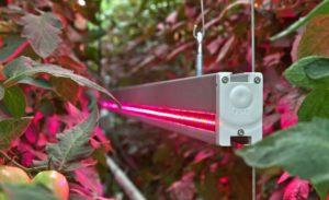 Обогрев с помощью инфракрасного источника света