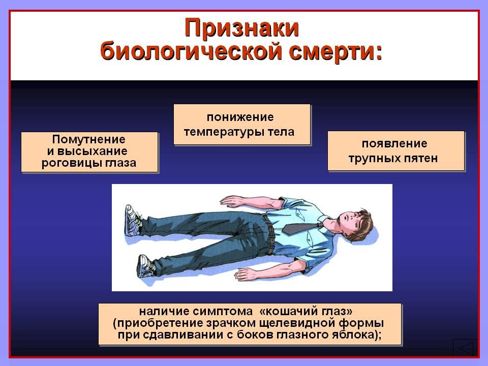 По каким признакам определяют биологическую смерть