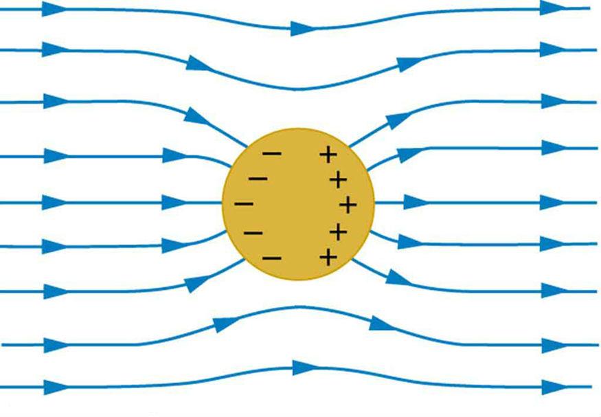 Проводник в электростатическом поле